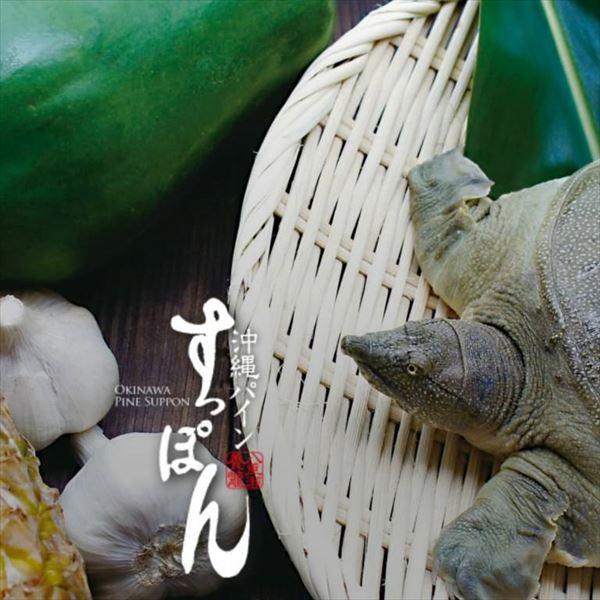 沖縄パインすっぽん鍋