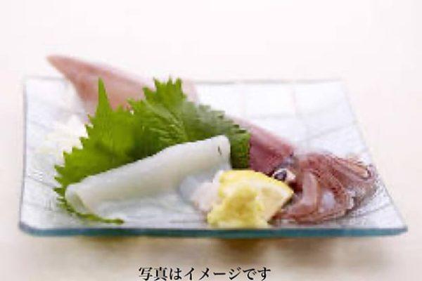 白イカ刺身(島根県産)